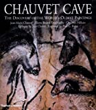 Chauvet Cave : The Discovery of the World's Oldest Paintings