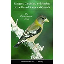 Tanagers, Cardinals, and Finches of the United States and Canada: The Photographic Guide