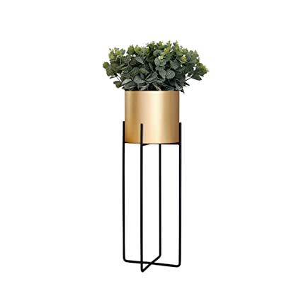 Amazon.com: Soporte de metal para plantas modernas europeas ...