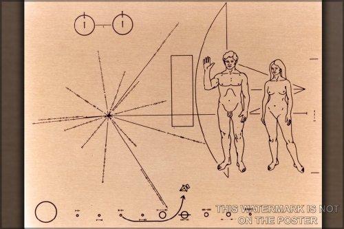 Pioneer Probe Plaque Poster