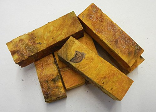 Buckeye Burl Stabilized Yellow 1 pc Pen Blank Short 7/8