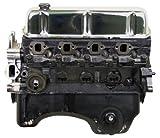 PROFessional Powertrain VF46 Ford 302
