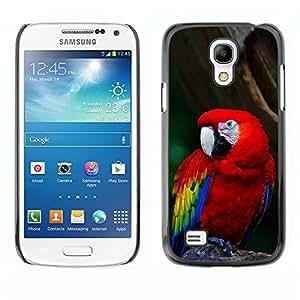 YOYO Slim PC / Aluminium Case Cover Armor Shell Portection //Cool Parrot //Samsung Galaxy S4 Mini