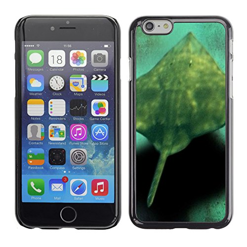 "Premio Sottile Slim Cassa Custodia Case Cover Shell // V00002871 les poissons d'aquarium // Apple iPhone 6 6S 6G PLUS 5.5"""