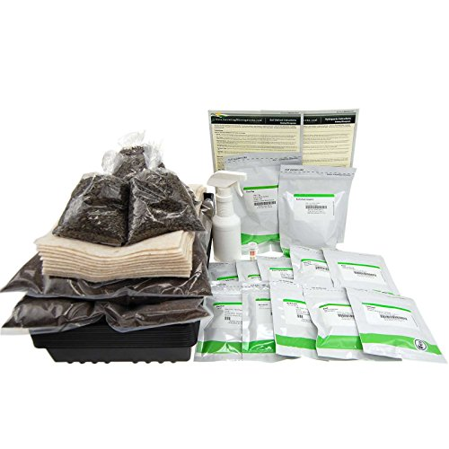 Deluxe Microgreens Growing Kit - Grow Micro Greens & Baby Salad - Soil & Hydroponic Indoor Garden: Complete Step-by-Step Kit