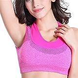 Mesh Fitness Women Yoga Top Push-Up Sports Bra Yoga Fitness Vest Bra Workout Running Top Bra rose red L