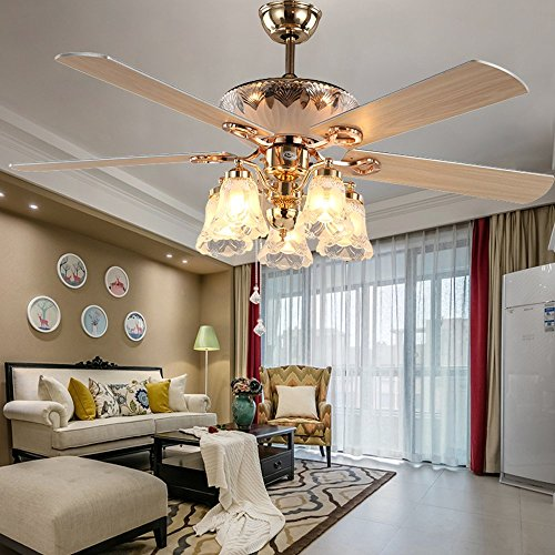 RainierLight Modern Ceiling Fan Remote Control 5 Reversible Blades 5 Frosted Glass Cover for Indoor/Bedroom/Living Room LED Fan Chandelier Mute Fan 52 Inch (Wood Blade)