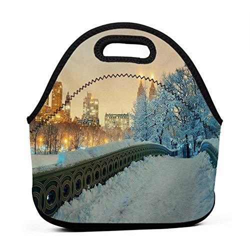 Travel Case Lunchbox with Zip Winter,Central Park Winter Skyscrapers and Snow Bow Bridge Manhattan New York,Orange White Olive Green,bag for lunch for proportion