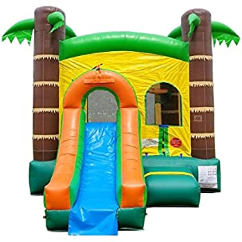 Amazon.com: Inflatable Bounce House and Wet / Dry Slide