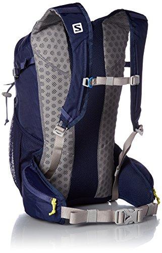 Salomon Evasion Backpack (20L)