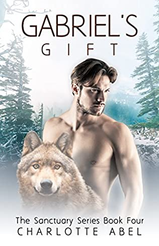 book cover of Gabriel\'s Gift