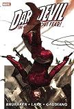 Daredevil by Ed Brubaker & Michael Lark Omnibus