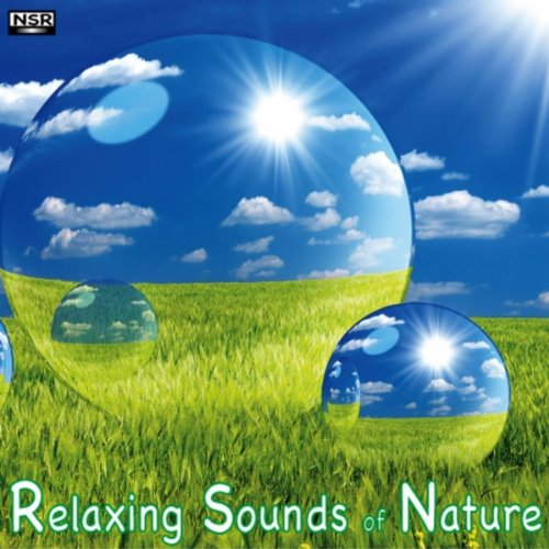 Crackling Fire Sounds Of Nature By Relaxing Sounds Of