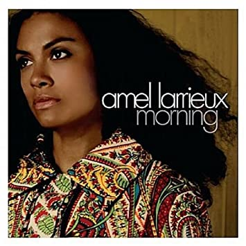 Amel Larrieux Morning