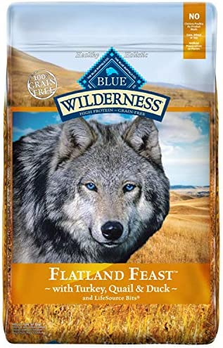 Blue Buffalo Wilderness Flatland Feast High Protein Grain Free, Natural Dry Dog Food with Turkey, Quail Duck