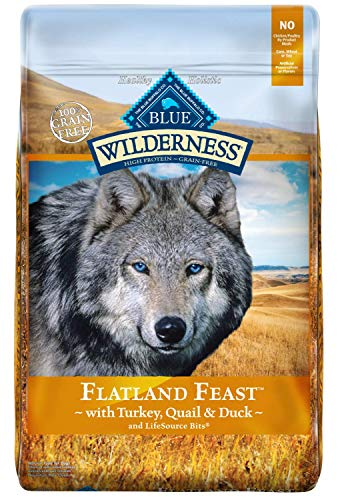 Blue Wilderness® Flatland Feast Dog Food - Natural, Grai