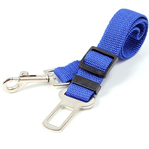106 opinioni per Neuftech Cintura di sicurezza guinzaglio regolabile per cane auto 65cm (Blu)