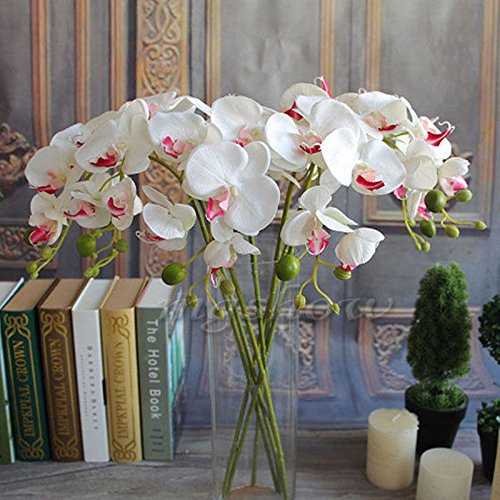 Fangfang Artificial Fake Silk Flower Phalaenopsis Butterfly Orchid Home Office Wedding Decoration (White)