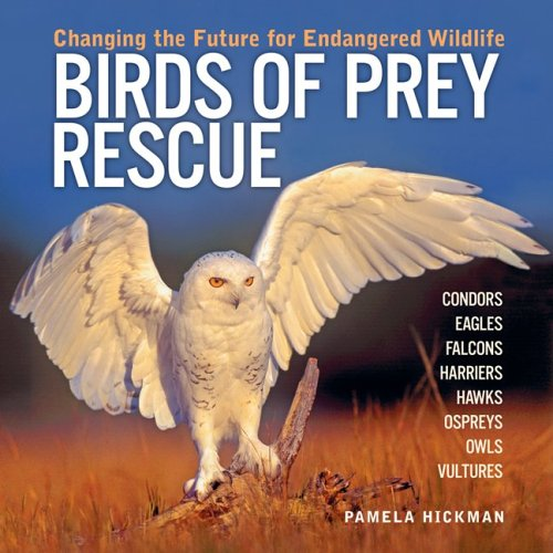 Birds of Prey Rescue: Changing the Future for Endangered Wildlife (Firefly Animal Rescue) pdf
