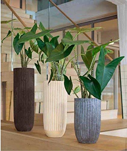 Blumenübertopf Polystone Lourdee Cylinder, nur für den Innenbereich geeignet, Farbe Grau, Ø 31cm Höhe 50cm