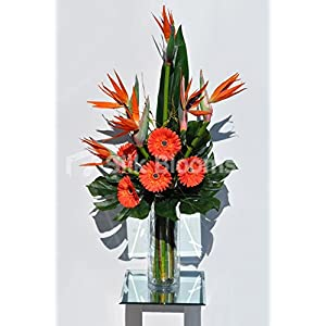 Bird of Paradise Flower and Orange Fresh Touch Gerbera Floral Table Arrangement