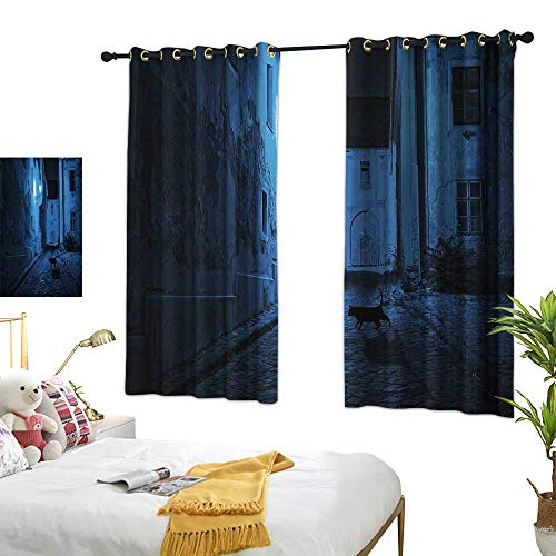Anshesix Kids Room Curtains Urban Black Cat Crossing Deserted Street at Night Mysterious Old European Town Alley W63 xL63 Blue Black White Suitable for Bedroom Living Room Study,etc.