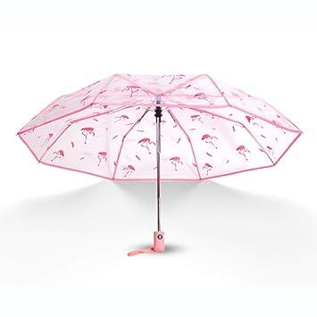 Yanj Paraguas Transparente Plegable Literario A Prueba De Viento Cubriendo La Lluvia Creativo Pequeño Fresco Paraguas