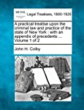 A practical treatise upon the criminal law and practice of the state of New York : with an appendix of precedents ... Volume 1 Of 2, John H. Colby, 1240182651