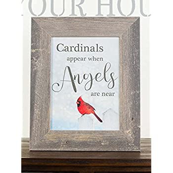 Amazon Com Cardinals Appear When Angels Are Near Sympathy