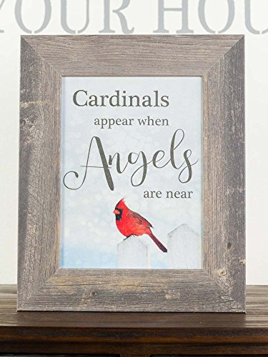 Cardinal Snow - Summer Snow Cardinals Appear When Angels are Near Sympathy Red Cardinal Religious Framed Art Decor 13x16 (Barnwood Frame)
