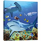 art shark - Tree-Free Greetings EcoArt Home Decor Wall Plaque, 11.25 x 11.25 Inches, Shark Collage Themed Wildlife Art (85957)