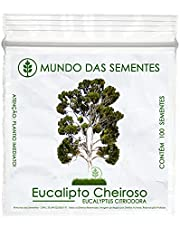 100 Sementes de Eucalipto Limão Cheiroso - Eucalyptus citriodora