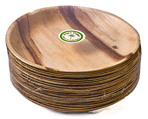 Pure Palm Planet Friendly Plates; Upscale Disposable Dinnerware; All-Natural Compostable Plateware (10
