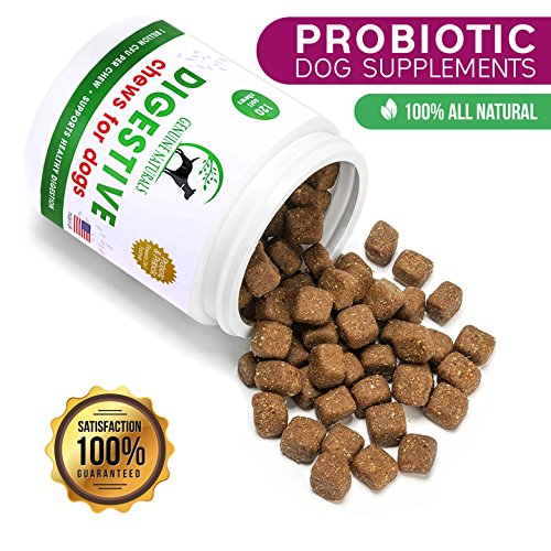 Digestive Supplement for Dogs Best Probiotic for Dogs that Helps with Diarrhea Upset Stomach Bad Breath and Constipation by Genuine Naturals120-Count (Paste Vitamin Treat)