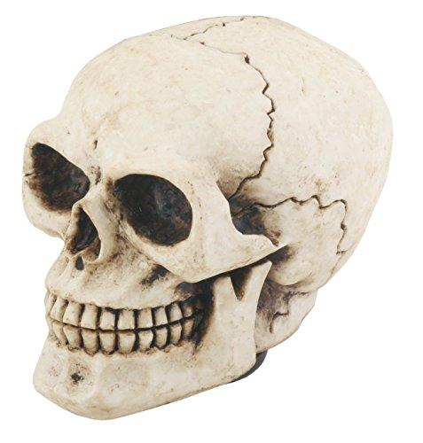 (YTC Skull Shift Knob - Collectible Figurine Statue Sculpture Figure Model)