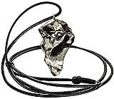Wallystone Gems Unique shungite Pendants (Elite Shungite)