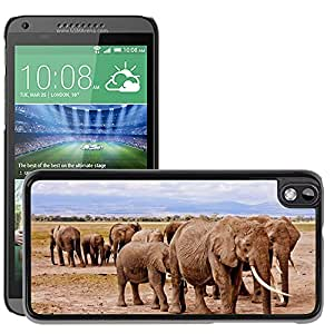 Hot Style Cell Phone PC Hard Case Cover // M00114931 Elephants Africa Amboseli Animal // HTC Desire 816