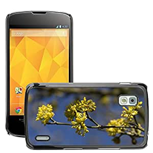 Hot Style Cell Phone PC Hard Case Cover // M00310403 Flower Branch Spring Plant Button // LG Nexus 4 E960