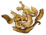 Sliced Organic Porcini Mushrooms 2 OZ Boletus Mushrooms Dried Wild Organic Porcini Mushrooms Europe