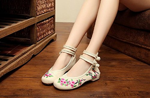 Lazutom Women Lady Vintage Embroidery Chinese Comfort Canvas Mary Jane Party Dress Shoes Begie PDO6RR