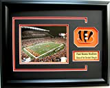 NFL Cincinnati Bengals Paul Brown Stadium Picture Frame with Team Patch and Nameplate, Medium, Black