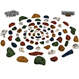 ALPIDEX Starter Set: 80 Climbing Holds included Screws and 250 T-Nuts - for a climbing wall of 6 to 10 m², Colour:assorted