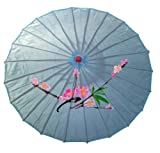 Light Blue Nylon Parasol with Hand Painted Design