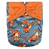 HappyEndings Contoured'Day or Night' AI2 All in Two Cloth Diaper/Snap-in Insert'Yoga Fox'