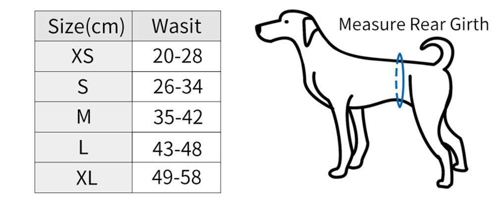 Pack de 2 Fundas de Vientre para Perros Extra c/ómodas Poli/éster, L Pa/ñales Vientre Lavables y Reutilizables para Perros Macho y Otros Animales Peque/ños Gatos CoKu Pa/ñales para Perro