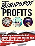 img - for Blindspot Profits: Cashing in on overlooked items every Amazon seller misses, and the hidden fortune all around you book / textbook / text book