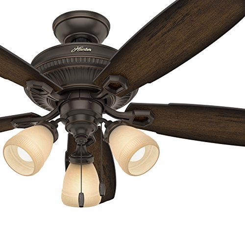 Hunter Fan 52 inch Traditional Ceiling Fan in Onyx Bengal with LED Light Kit (Certified Refurbished)