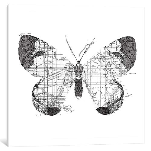 """iCanvas Butterfly Wanderlust, Square by Tobias Fonseca Canvas Print 12"""" x 12"""" x 0.75"""" from iCanvasART"""