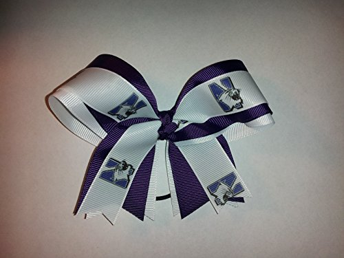 (Wildcats Hair Bow)