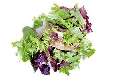 Mesclun, Mixed Salad Greens Seeds